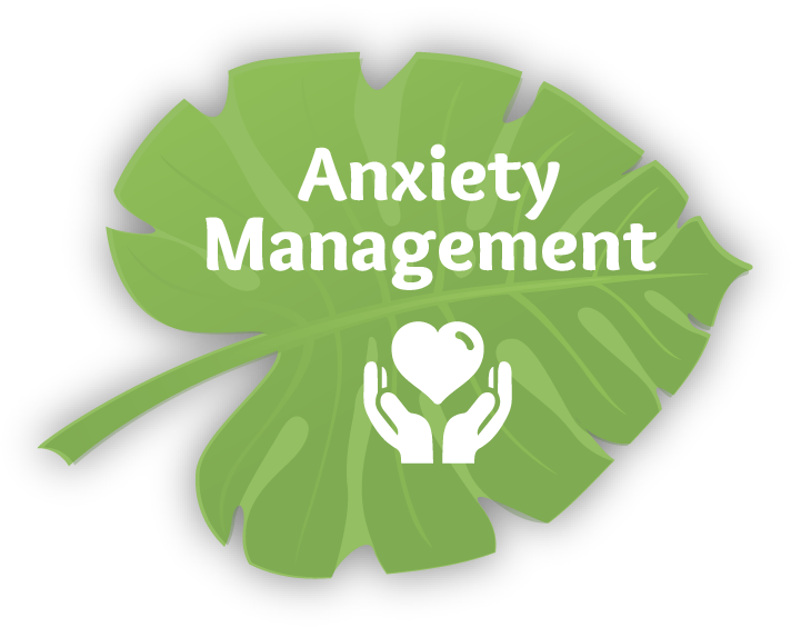 To learn more about dental anxiety management click here