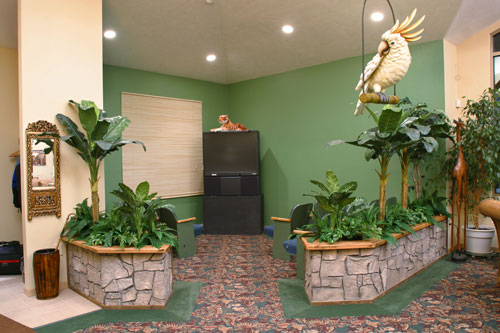 Jungle themed waiting room with big TV.